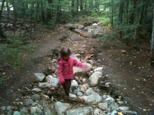 Hurricane Irene destroyed the hiking trails