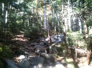 More Lonesome Lake Trail