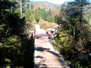 Lonesome Lake Bridge