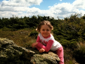 Riley in the White Mountains